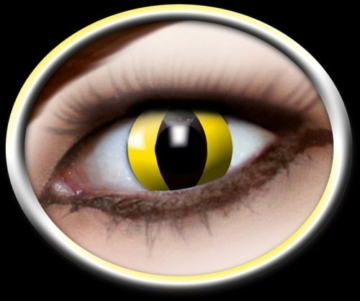 Eyecatcher Color Fun - Farbige Kontaktlinsen - Yellow Cat -Gelbe Katze - 1 Paar - Ideal für Karneval, Fasching, Halloween & Party - 1
